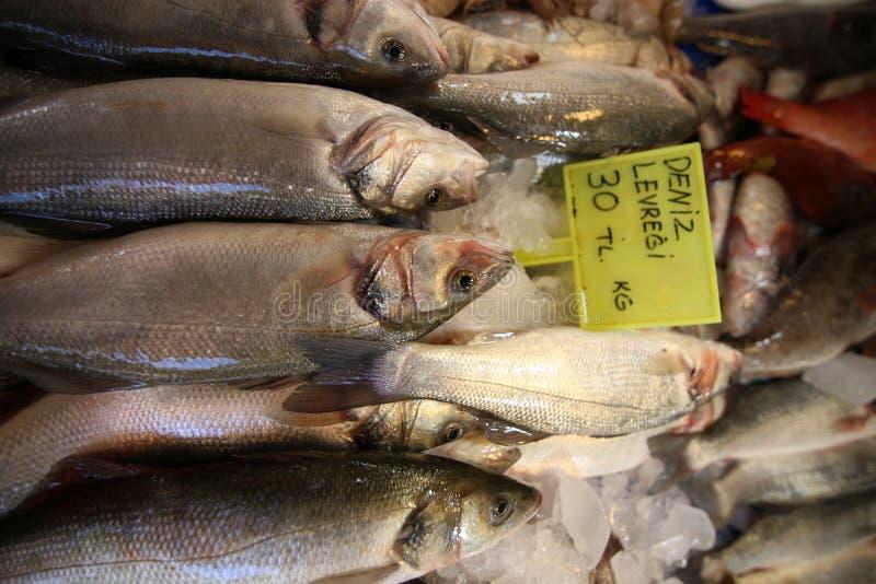 Pescados de la perca del mercado de pescados fotos de archivo