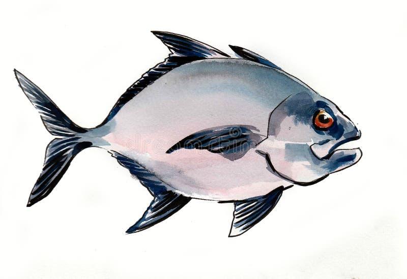 Pescados de la pira?a ilustración del vector