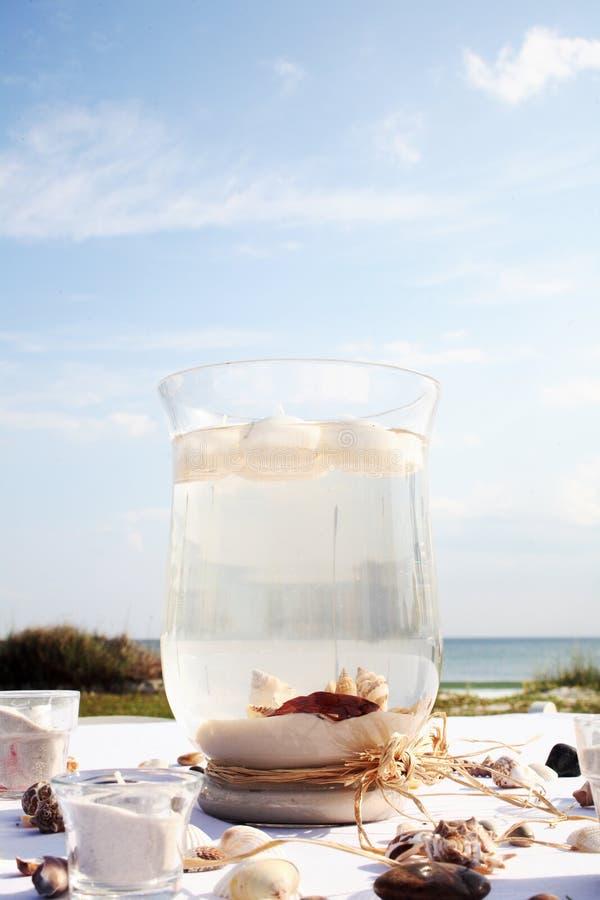Pescados de la playa fotos de archivo libres de regalías