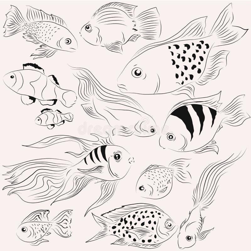 Pescados de los ejemplos Océano monocromático libre illustration