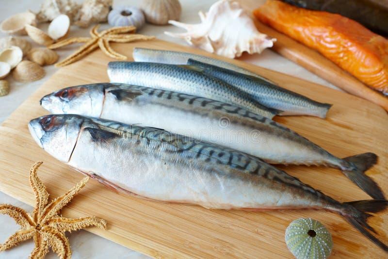 Pescados de mar frescos imagen de archivo libre de regalías