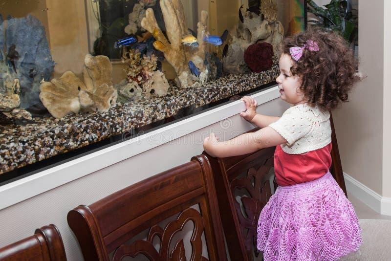 Pescados de observación de la muchacha en acuario imagen de archivo