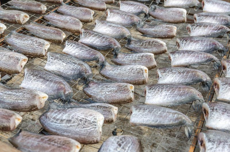 Pescados de sequía imagen de archivo