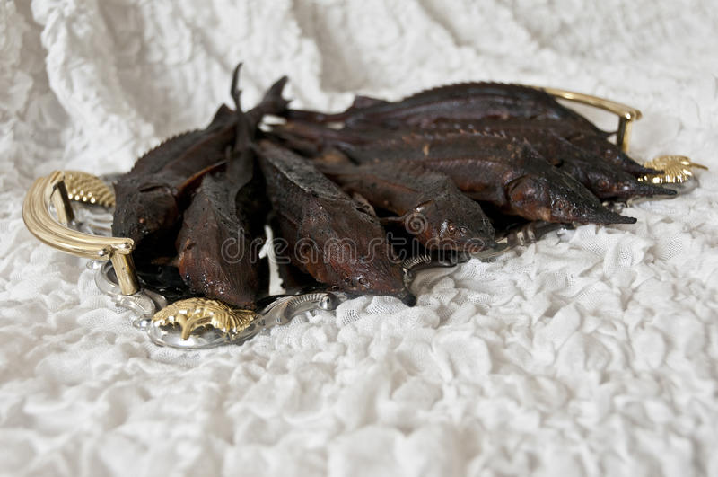 Pescados de Sterlet foto de archivo libre de regalías