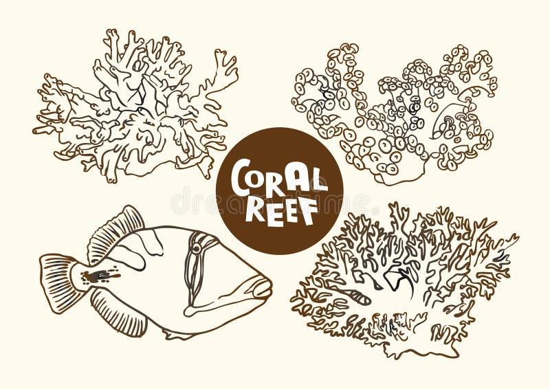 Pescados del arrecife de coral y dibujo del contorno del vector de los corales  stock de ilustración