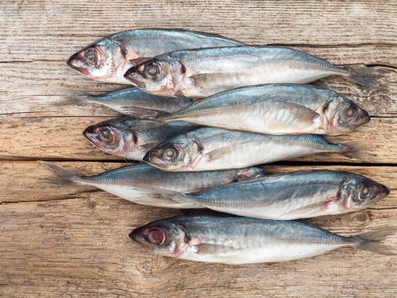 Pescados del Carangidae en el tablero de madera gris foto de archivo