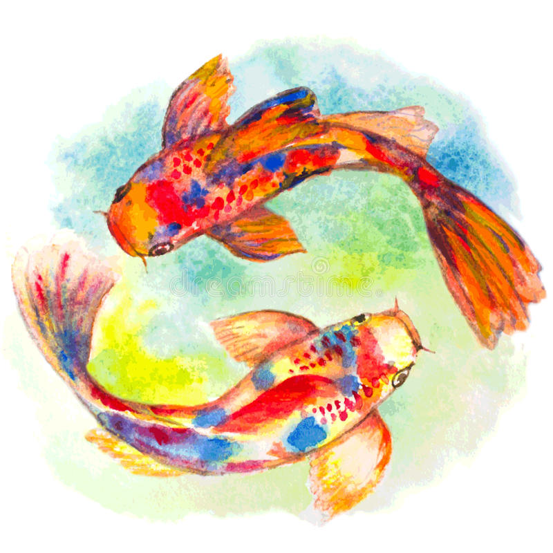 Pescados dibujados mano del koi de la acuarela libre illustration