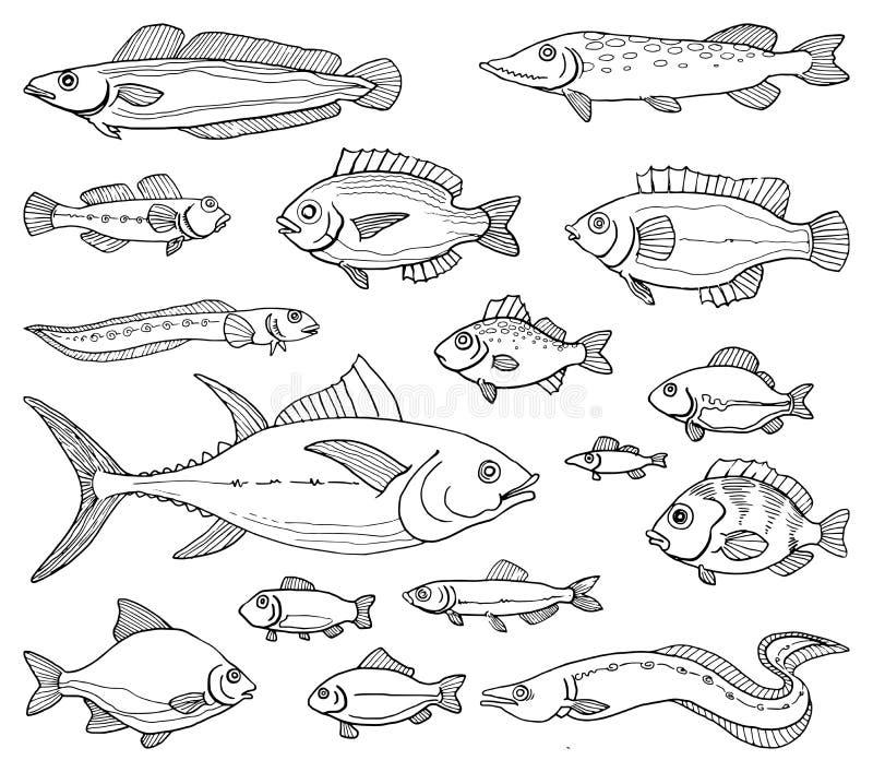 Pescados drenados mano stock de ilustración