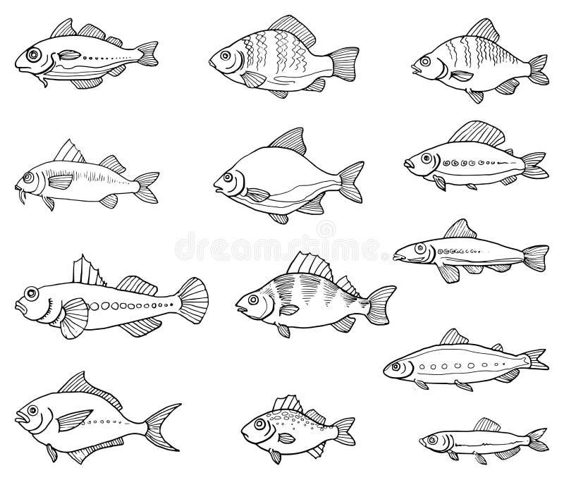 Pescados drenados mano libre illustration