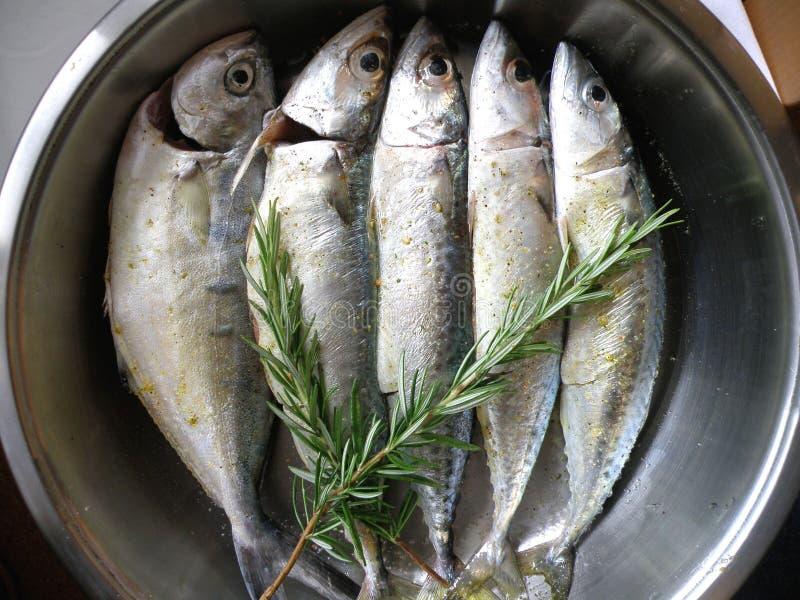 Pescados en el adobo foto de archivo