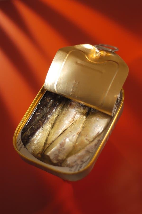 Pescados en una poder foto de archivo libre de regalías