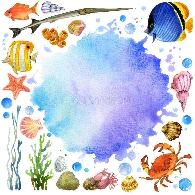 Pescados exóticos, arrecife de coral, algas, fauna inusual del mar ilustración del vector