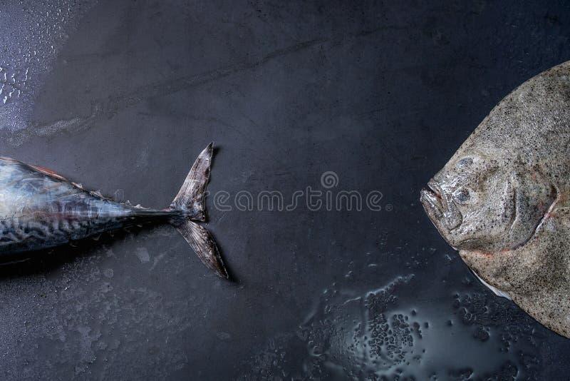 Pescados frescos crudos del atún y de la platija fotos de archivo libres de regalías
