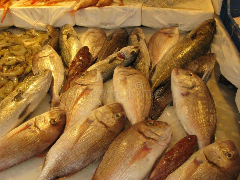 Pescados frescos en el mercado siciliano imagen de archivo