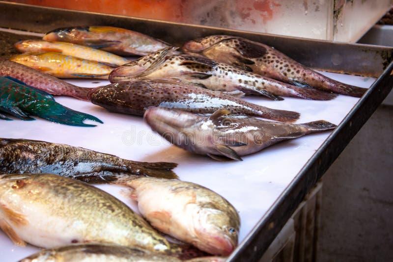 Pescados frescos en Hong Kong listo para guisar fotografía de archivo