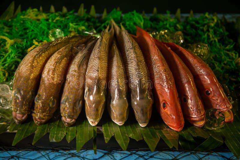 Pescados frescos en la exhibición foto de archivo libre de regalías