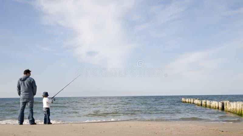 Pescados grandes imagen de archivo