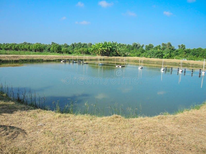Pescados o camarón al aire libre que cultivan la charca con el sistema de la aireación del agua de la granja fotos de archivo