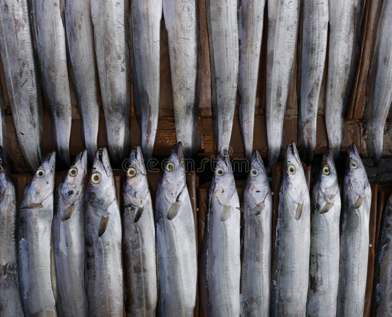 Pescados para la venta en mercado coreano fotos de archivo