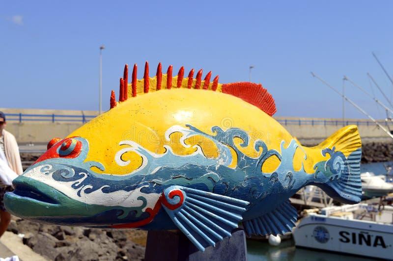 Pescados pintados puerto de Corralejo imagenes de archivo