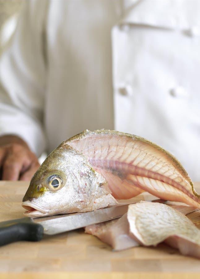 Pescados que cortan imagen de archivo libre de regalías