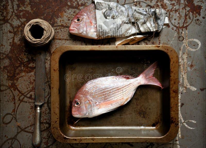 Pescados rojos del pagrus listos para ser cocinado en el horno fotos de archivo libres de regalías