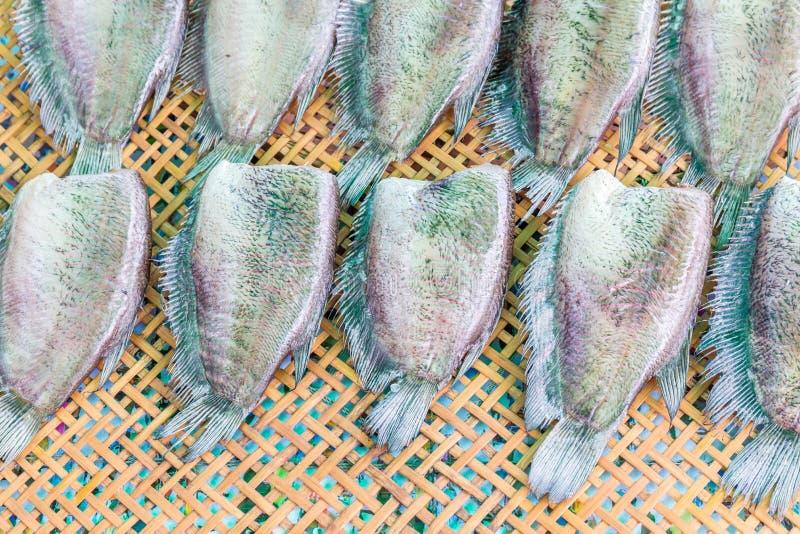 Pescados salados secados de la hoja en el tamiz de madera, preserv tradicional tailandés fotografía de archivo libre de regalías