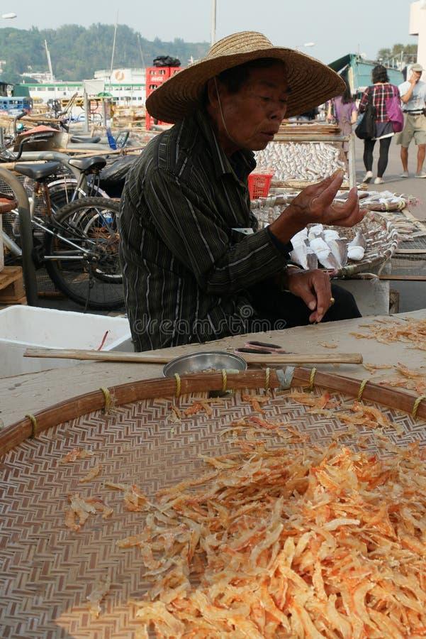 ¿Pescados secados? foto de archivo libre de regalías