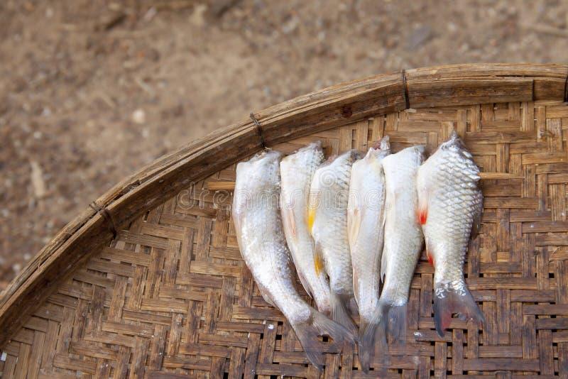 Pescados secados en la cesta de bambú usada en cocina asiática fotografía de archivo