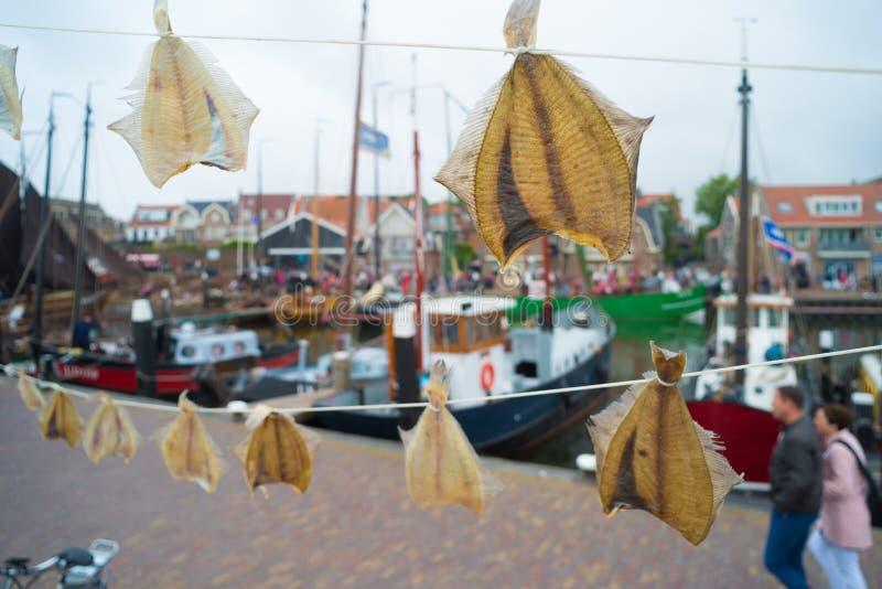 Pescados secados en una línea fotos de archivo libres de regalías