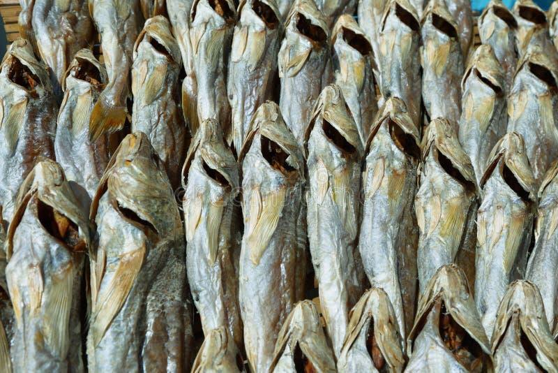 Pescados secados en una parada del mercado del pueblo del Tai O fotografía de archivo