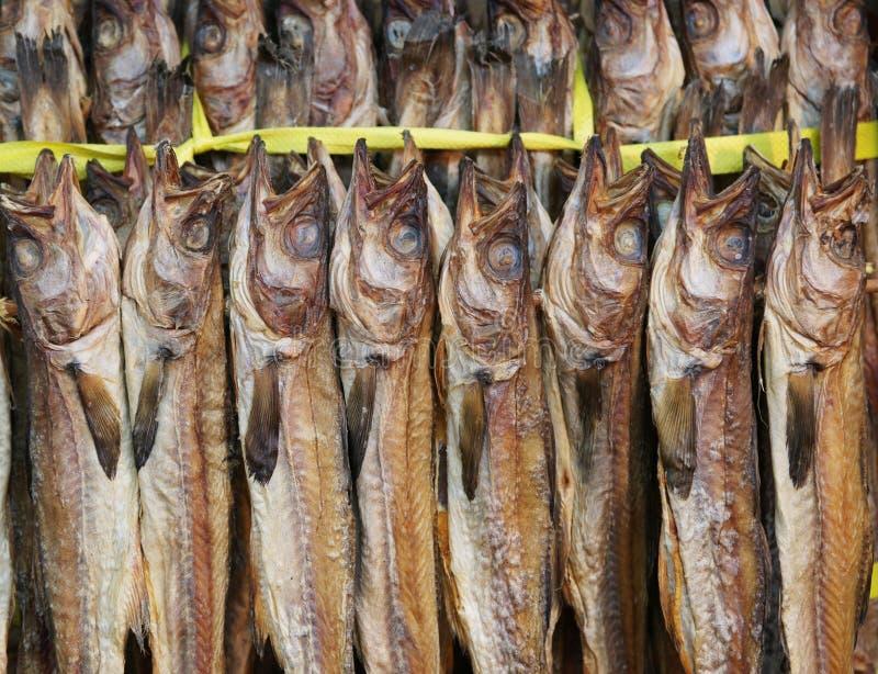 Pescados secados para la venta foto de archivo