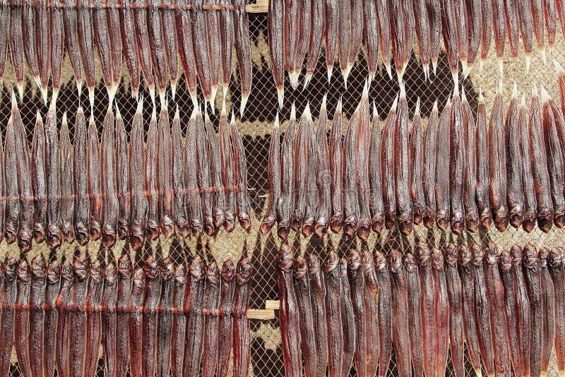 Download Pescados secos imagen de archivo. Imagen de bacalaos - 41901389