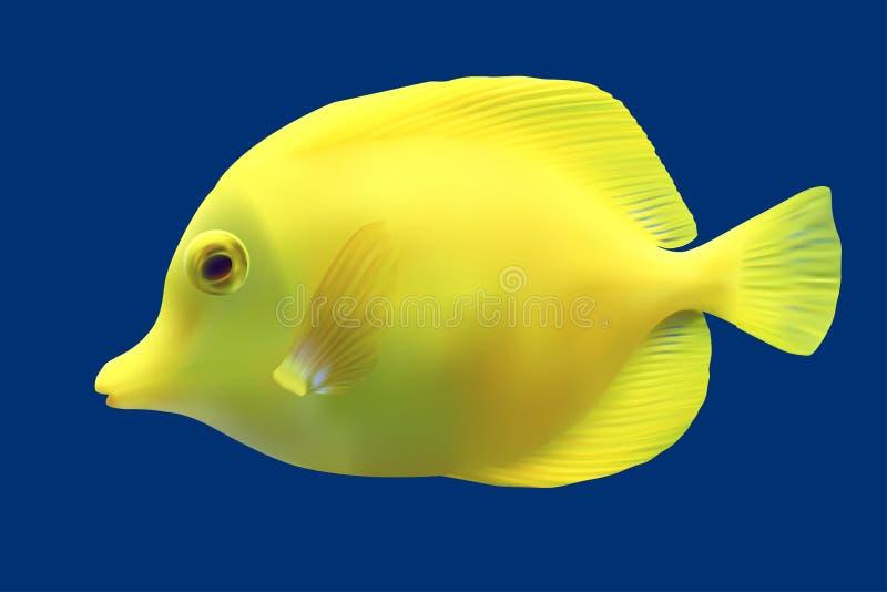 Pescados tropicales amarillos. stock de ilustración