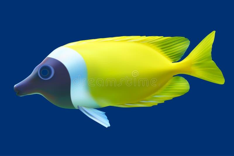 Pescados tropicales amarillos stock de ilustración