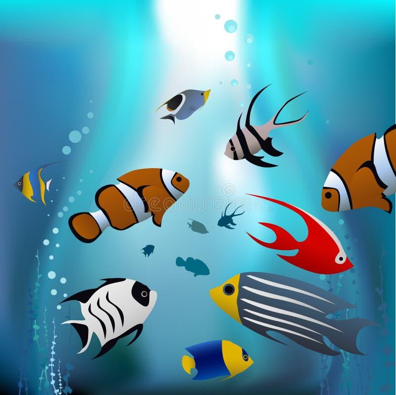 Pescados tropicales de la historieta ilustración del vector