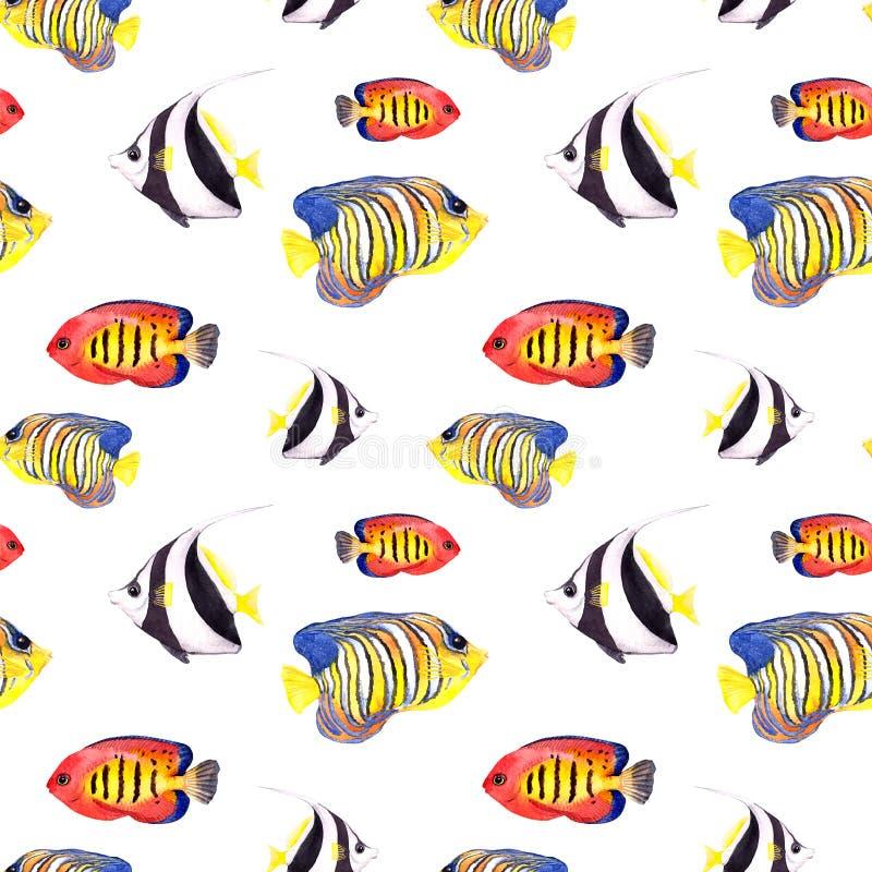 Pescados tropicales Repetición del modelo inconsútil watercolor stock de ilustración