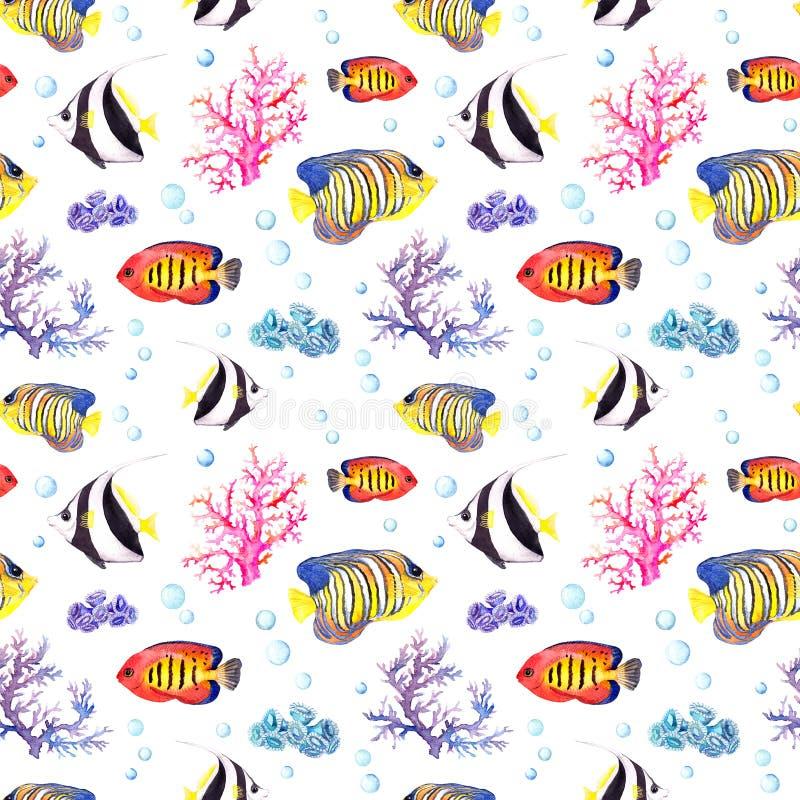 Pescados y concha marina Repetición del modelo inconsútil watercolor ilustración del vector