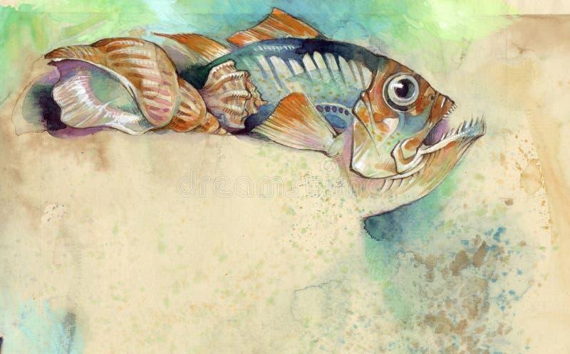 Download Pescados y shell stock de ilustración. Ilustración de gastronomía - 7150527
