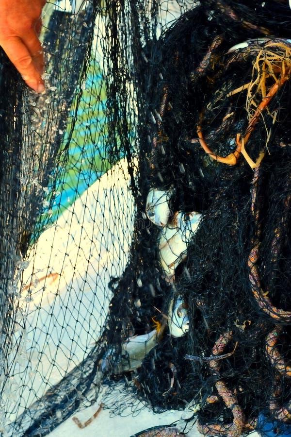 Pescando al mare adriatico vicino a Korcula fotografia stock
