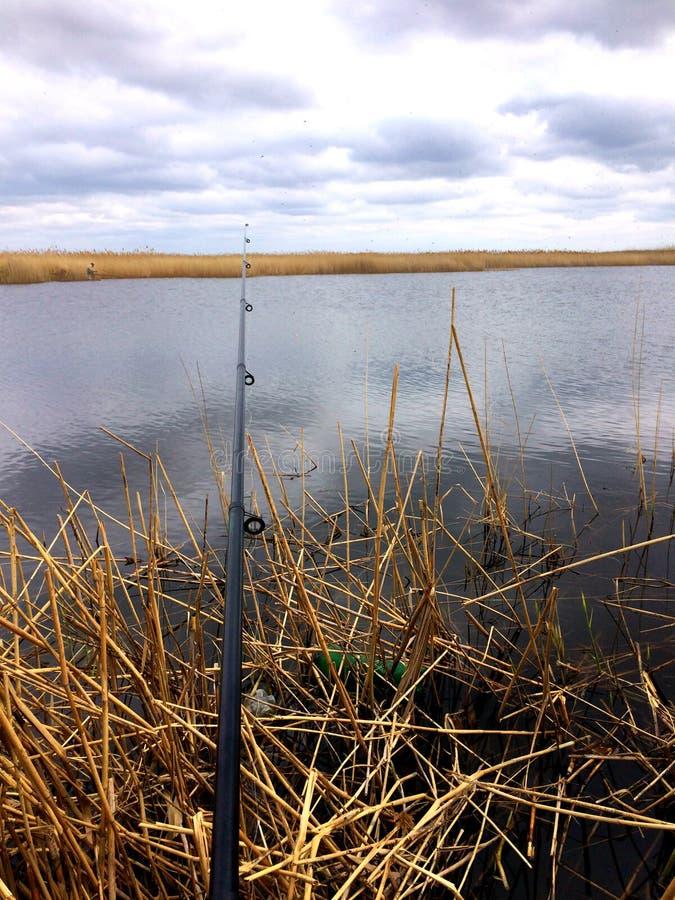 pescando com a vara de pesca no banco de rio, captura de peixes, foto de stock royalty free