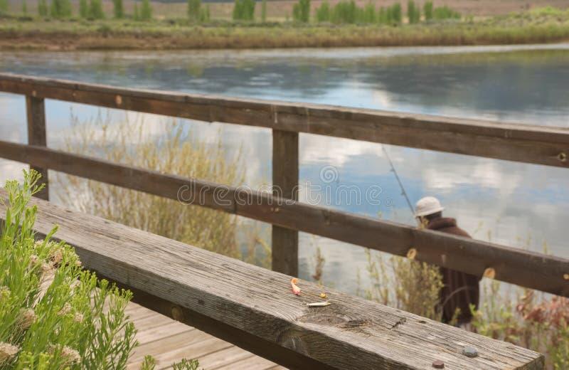 Pescando el muelle a lo largo de la impulsión de la fauna en marrones parquee a principios de verano imagenes de archivo