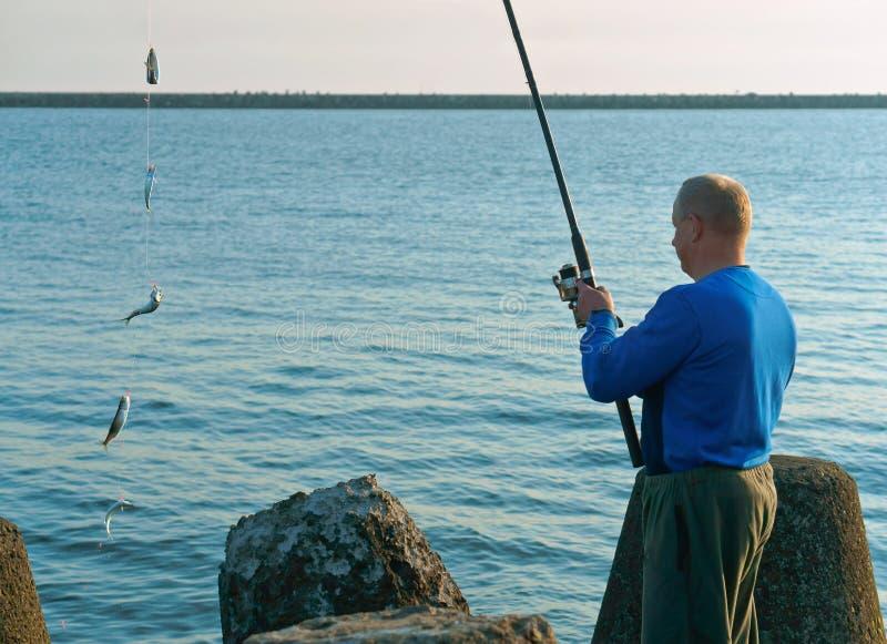 Pescando em um Salak, um homem travou um peixe em uma vara de pesca, pescando na noite, pesca de mar na primavera fotos de stock royalty free