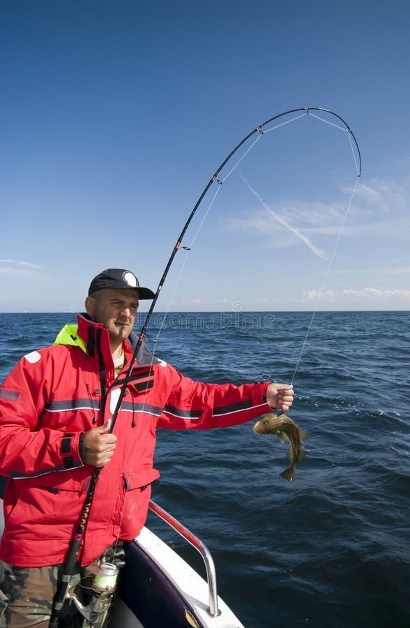 Pescando per i merluzzi immagini stock