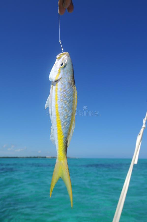 Pescando in San Pedro fotografia stock libera da diritti