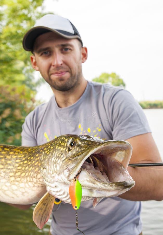 Pescatore con il pesce del luccio Trofeo del rilascio e del fermo immagine stock