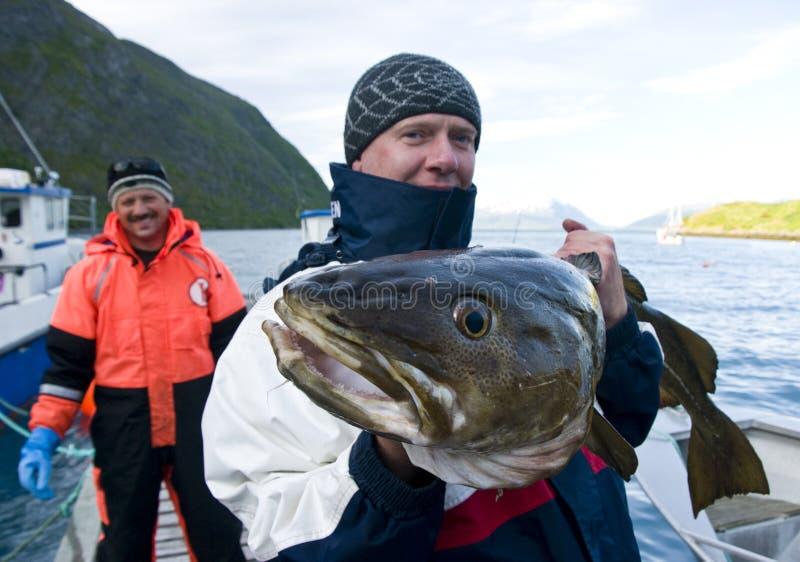Pescatore con merluzzo gigante immagine stock libera da diritti