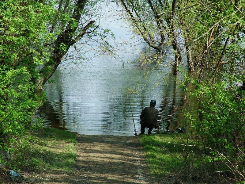 Pescatore di pesca   fotografia stock libera da diritti