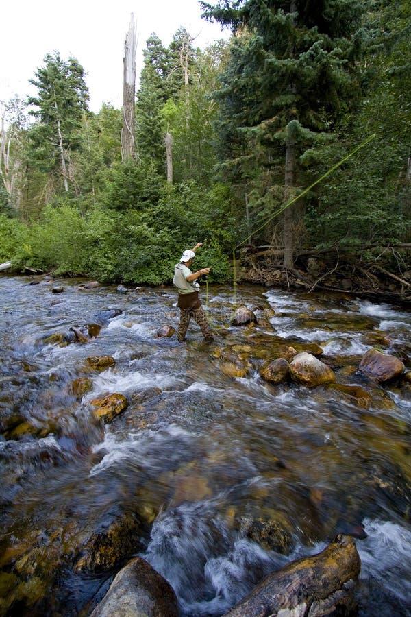 Pescatore in fiume fotografia stock libera da diritti