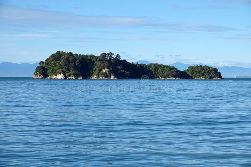Pescatore Island in Abel Tasman National Park, Nuova Zelanda immagine stock